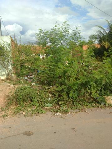 Terreno bairro Dr Fábio 1 - Foto 4