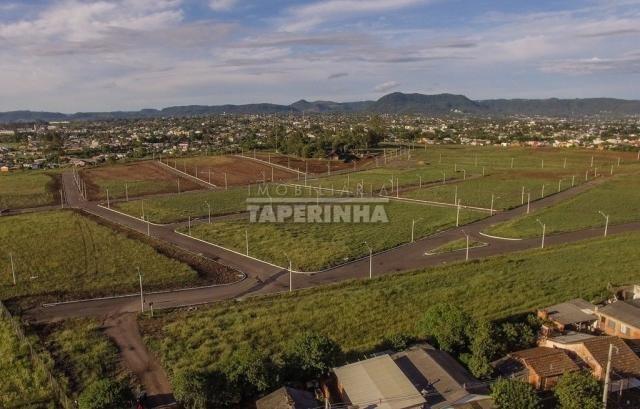 Terreno à venda em Pinheiro machado, Santa maria cod:10767 - Foto 4