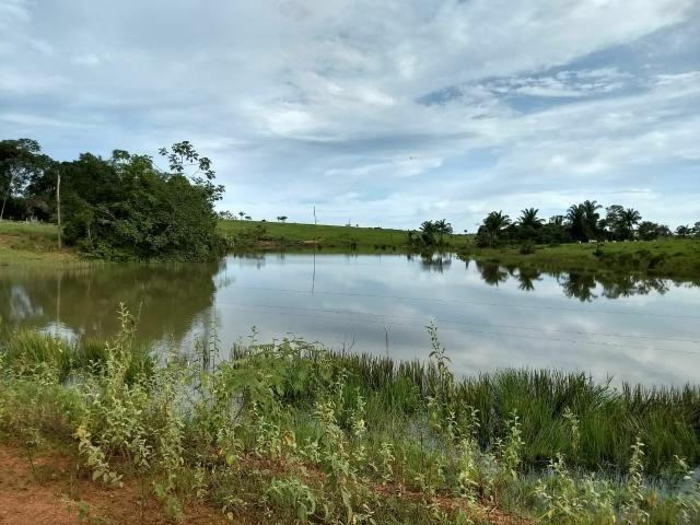Fazenda em Parecis - RO. 4.000 hectares