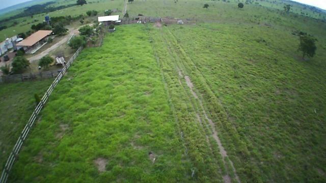 Fazenda em Parecis - RO. 4.000 hectares - Foto 6