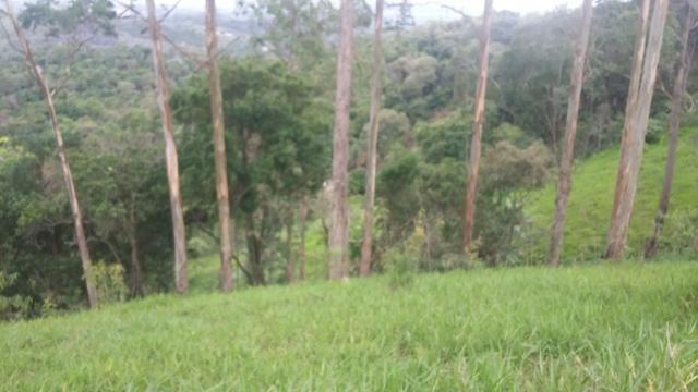 05- Paz em um lote de 1000mt² em área Rural - Foto 18