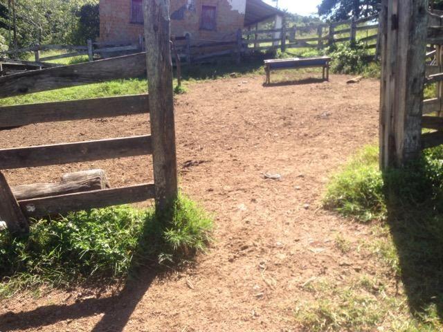 Fazenda caruru Valor R$ 1,400,000 - Foto 3