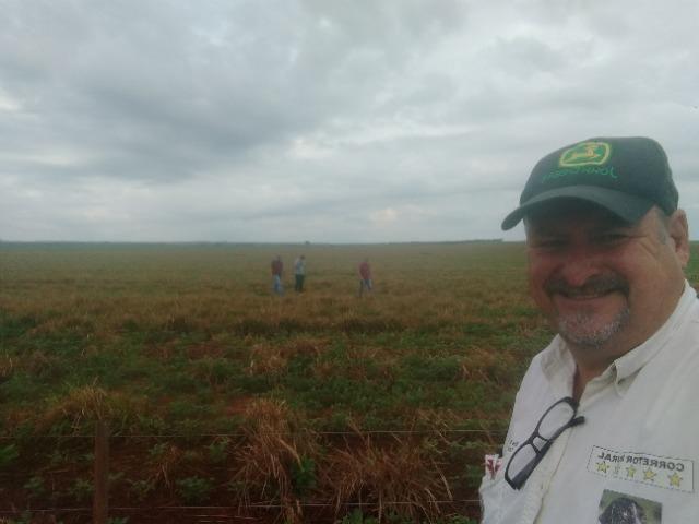 Alugo Fazenda p Arrendamento no Ms 1000 há