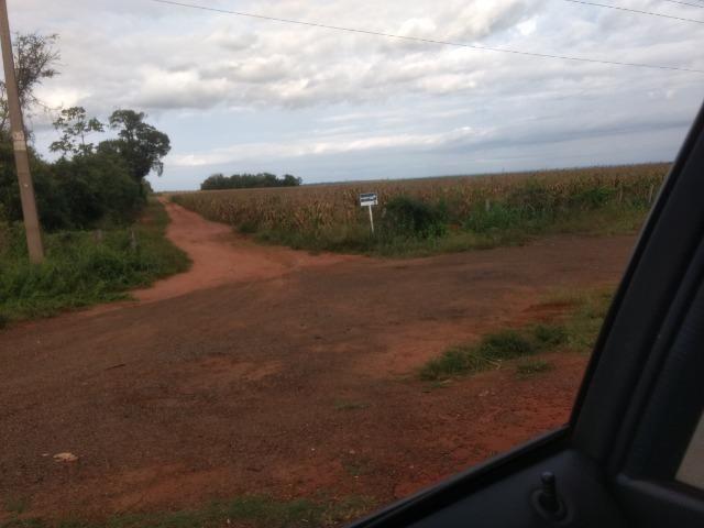 Alugo Fazenda p Arrendamento no Ms 1000 há - Foto 10