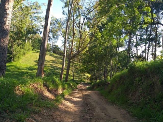 05- Paz em um lote de 1000mt² em área Rural - Foto 9