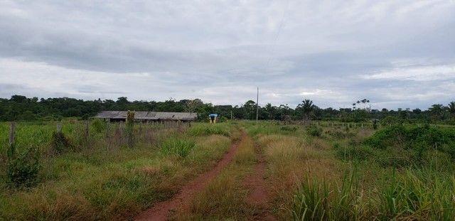 Fazenda 614 hectares documentada