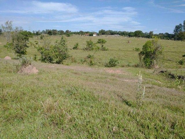 Sítio, Chácara, Fazenda, Lote, Terreno a Venda em Porangaba, Bofete, Torre de Pedra / SP 1 - Foto 17