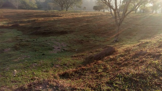Fazenda, Sítio, Chácara a Venda em Porangaba, Torre de Pedra, Bofete, Área 178.838m² (7,39 - Foto 20