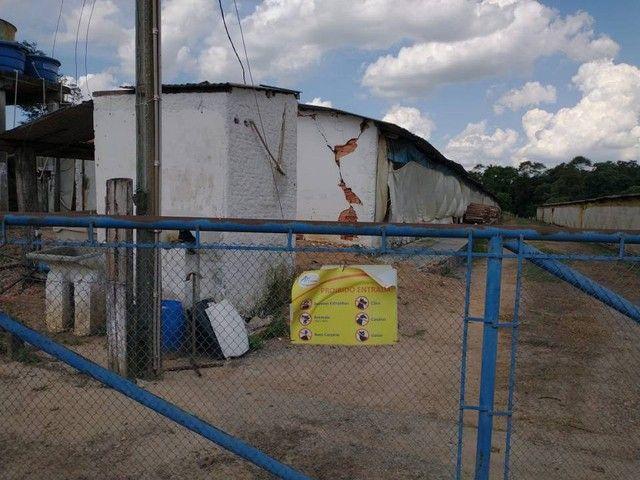 Sítio, Chácara a Venda com 12.100 m², 2 granjas com 13 mil aves cada em Porangaba - SP - Foto 4