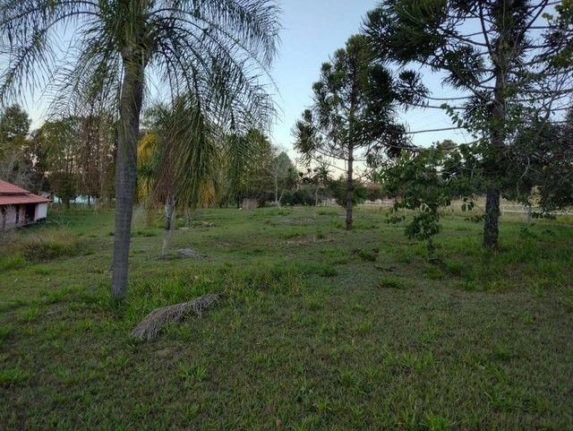 Sítio, Chácara a Venda com 19.000 m² com 4 quartos Bairro Rio Bonito 8km Cidade - Porangab - Foto 19