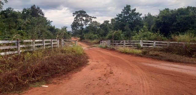 Fazenda a venda em Barra do Graça  - Foto 20