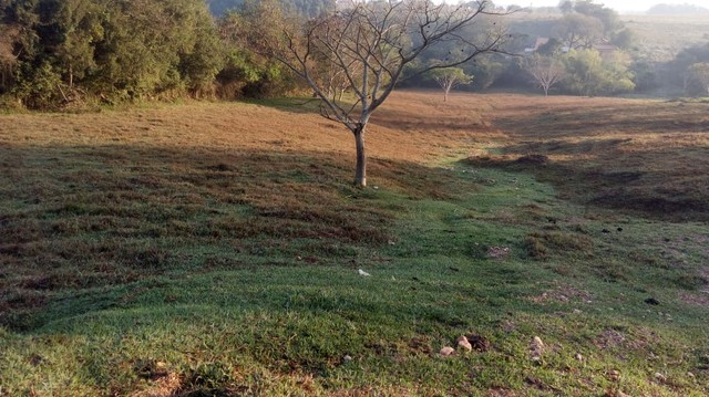 Fazenda, Sítio, Chácara a Venda em Porangaba, Torre de Pedra, Bofete, Área 178.838m² (7,39 - Foto 17