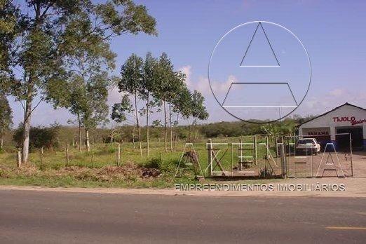 Terreno para alugar em Cavalhada, Porto alegre cod:2164 - Foto 3