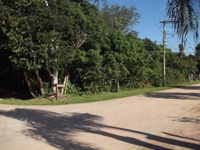 Casa à venda com 2 dormitórios em Grama, Garopaba cod:627 - Foto 8