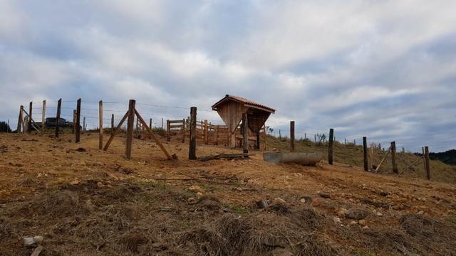 Sitio em arapoti - Foto 11