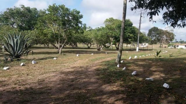 Fazenda para eventos ou temporada em São Gonçalo dos Campos Ba - Foto 18