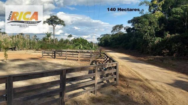 Fazenda com 140 Hectares em Candeias do Jamari/RO à venda, a 14 km da cidade - Foto 2