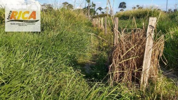 Fazenda com 140 Hectares em Candeias do Jamari/RO à venda, a 14 km da cidade - Foto 17