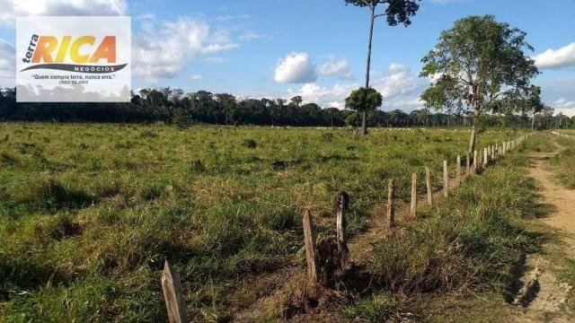 Fazenda com 140 Hectares em Candeias do Jamari/RO à venda, a 14 km da cidade - Foto 6