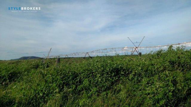 Fazenda no Estado da Bahia - Foto 7
