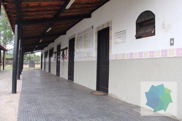 Haras à Venda em Sarapuí/SP - Foto 6