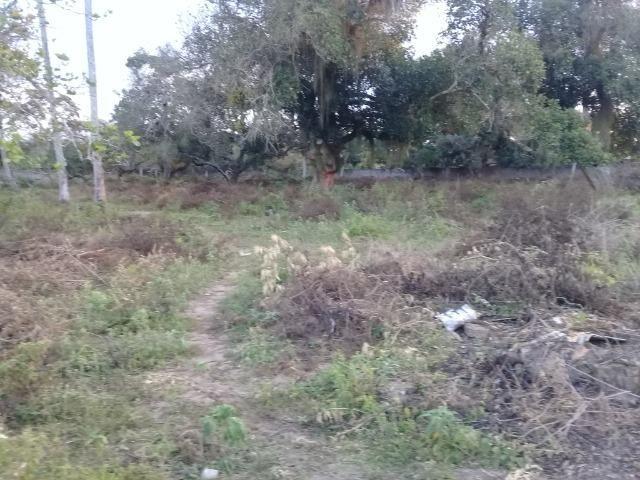 Excelente área de terra no povoado de boa hora, próximo ao parque viver tomba - Foto 10