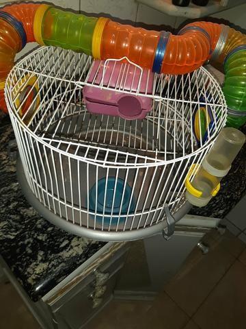 Gaiola hamster/rato - Foto 2