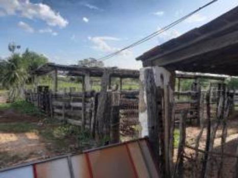 Vendo fazenda em crateus ce ou troco - Foto 9