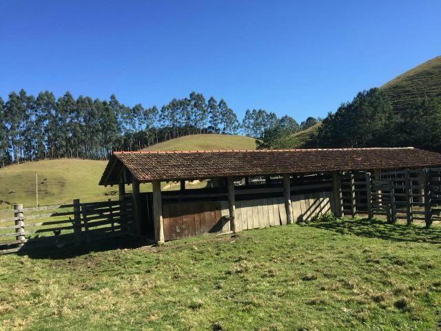 Fazenda anitápolis - Foto 9