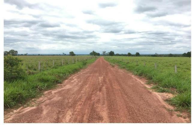 Fazenda Excelente Fazenda no Município de Poconé 16520412 hectares - Foto 5