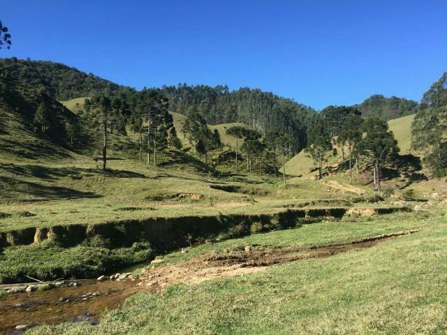 Fazenda anitápolis - Foto 2