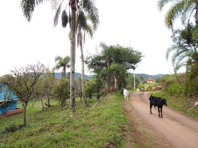 Barbada! Lindo sítio em Gramado/RS - Foto 5