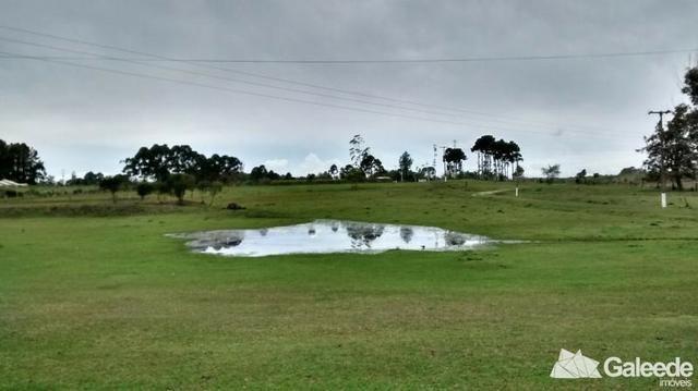 Chacara|Área com 60.000m² em São José dos Pinhais - Foto 5