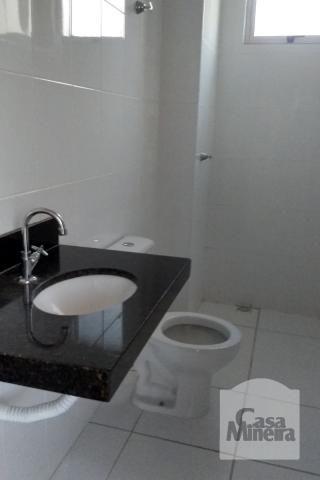 Apartamento à venda com 3 dormitórios em Jardim américa, Belo horizonte cod:249515 - Foto 6