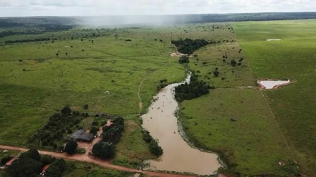 Fazenda em Parecis - RO. 4.000 hectares - Foto 5