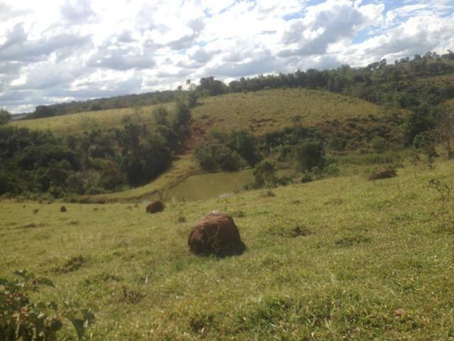 Fazenda caruru Valor R$ 1,400,000 - Foto 7