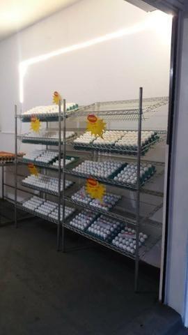 Distribuidora de ovos - Foto 3