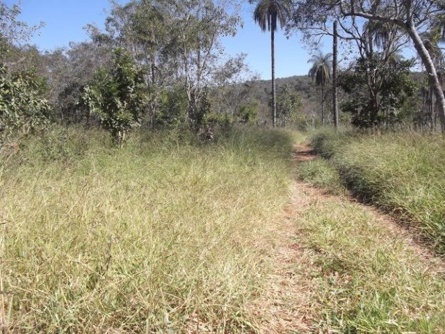 Jaboticatubas. Lindo terreno Rural de 80 mil metros - Foto 6