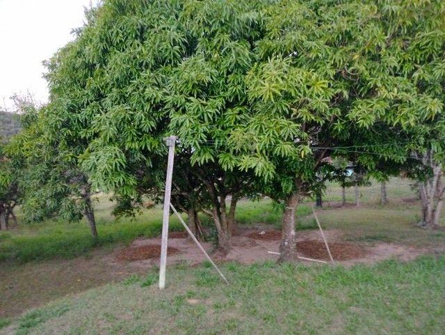 Sítio, Chácara a Venda com 19.000 m² com 4 quartos Bairro Rio Bonito 8km Cidade - Porangab - Foto 6