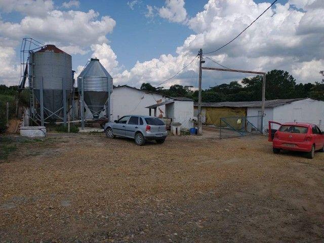 Sítio, Chácara a Venda com 12.100 m², 2 granjas com 13 mil aves cada em Porangaba - SP - Foto 12
