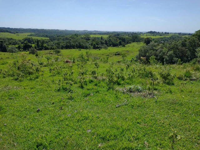 Terreno, Sítio, Chácara a Venda com 60500 m² 2,5 Alqueres em Bairro Rural - Porangaba - SP - Foto 15