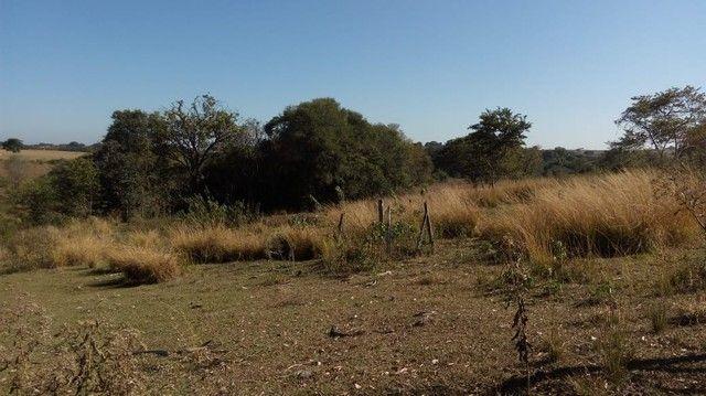 Sítio, Fazenda, Chácara a Venda com 32.000m² com 3 quartos - Porangaba, Bofete, Torre de P - Foto 12