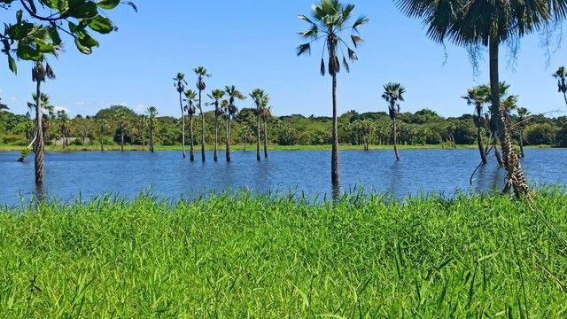 Reserva Camará-{Campanha promocional} - Foto 10