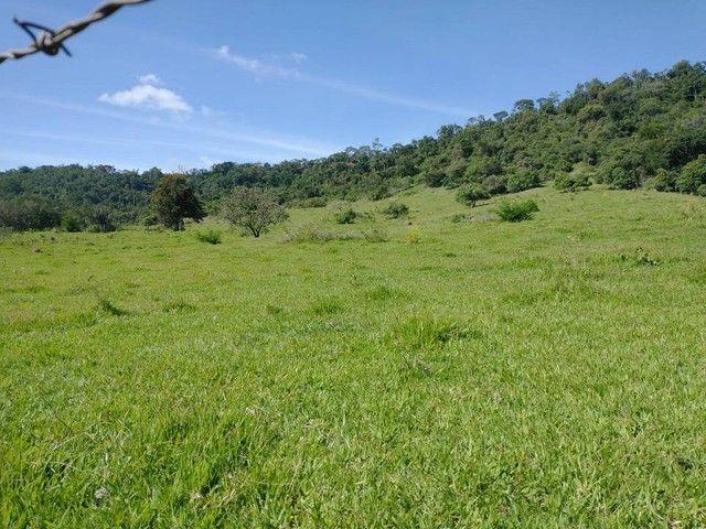 Terreno, Sítio, Chácara a Venda com 60500 m² 2,5 Alqueres em Bairro Rural - Porangaba - SP - Foto 8