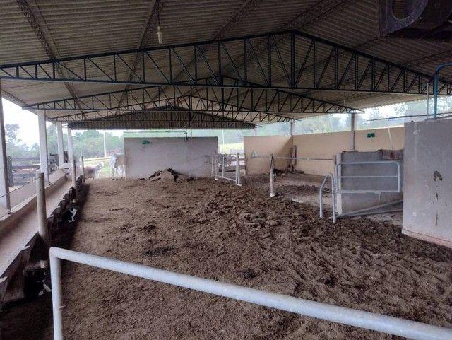 Sítio, Chácara, Fazenda a Venda com 72.600 m², 3 Alqueires, Leiteria, Casa como 2 quartos - Foto 3