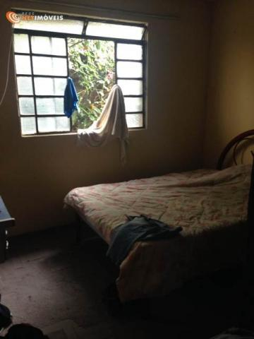 Casa à venda com 2 dormitórios em Glória, Belo horizonte cod:519597 - Foto 11