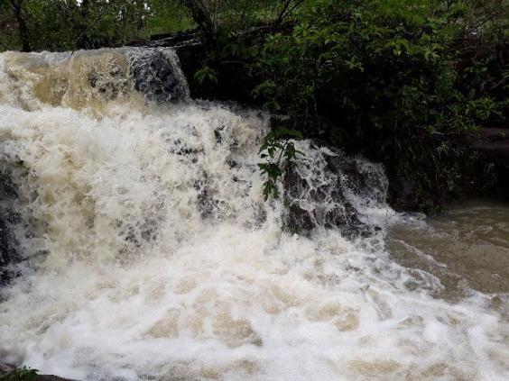 Fazenda com 93 Alqueires em Novo Acordo - Tocantins