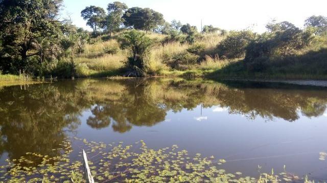 Fazenda no município de faina-GO! 24 Alqueires! - Foto 13