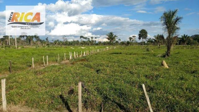 Fazenda com 140 Hectares em Candeias do Jamari/RO à venda, a 14 km da cidade - Foto 8