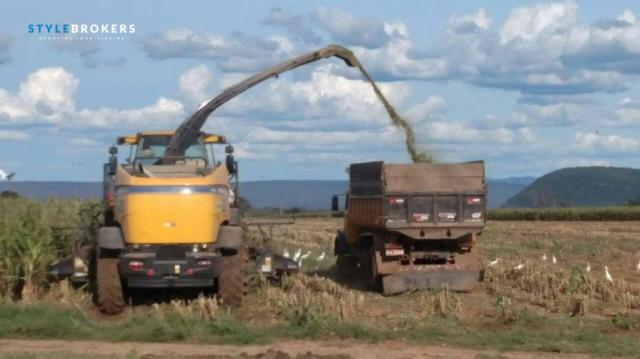 Fazenda no Estado da Bahia